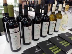 Lo puro Costadoro Vini